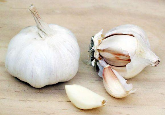 Colesterolo: aglio e olio di camelia, due alleati imbattibili