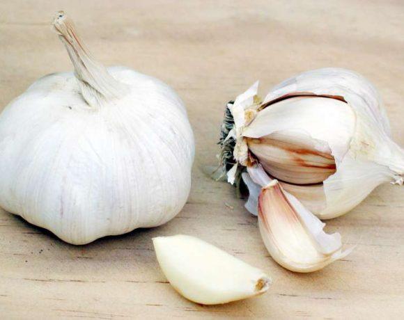 L'aglio e l'olio di camelia contro il colesterolo