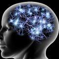 cervello e capacità non sfruttate