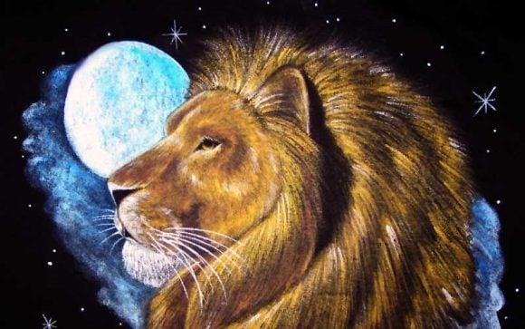 La donna leone: non puoi non innamorarti di lei