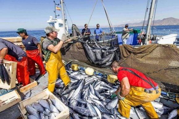 Sgravi contributivi nel settore pesca per tutto il 2018