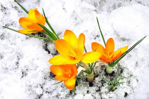 Meteo – temperature: Le previsioni per il weekend. Cosa ci aspetta la prossima settimana?