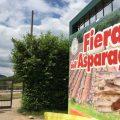 Fiera dell'Asparago: dal 12 al 20 maggio a Cantello, Lombardia