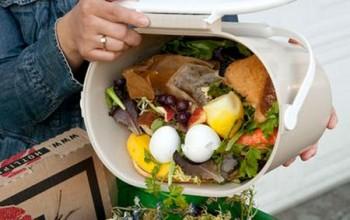 Sprechi alimentari e fame nel mondo