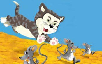 Verbale del congresso dei topi