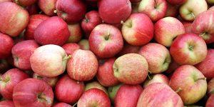 dieta di latte e mele per dimagrire 23 chili in 3 giorni