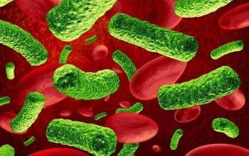 Allarme infezioni batteri