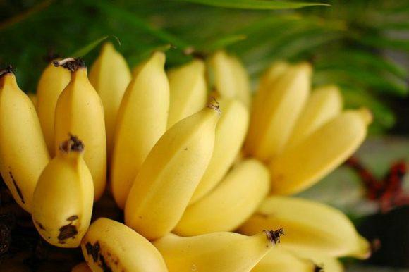 Dieta e banana: una al giorno, non bisogna esagerare