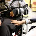 assegni di cura disabili
