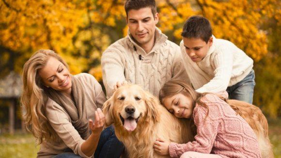 Tenere in casa un animale fa davvero bene alla nostra salute?