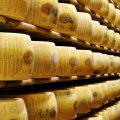 Parmigiano dannoso? Giù le mani dal Parmigiano Reggiano Dop!
