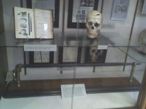 the_skull_of_phineas_gage