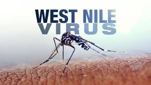 west nile e i donatori di sangue