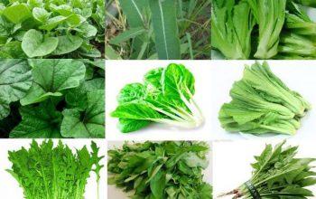 verdure salutare