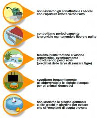 Sardegna: allarme circolazione virus febbre del Nilo. C'è pericolo?