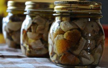 pezzi di vetro nei vasetti di funghi porcini
