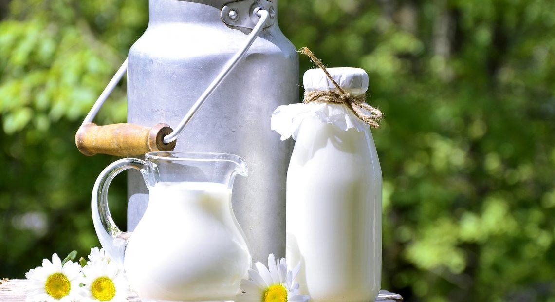 estrogeni nel latte vaccino