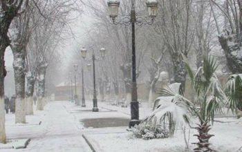 Neve a Natale