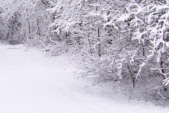 Allerta meteo: arriva la neve anche a bassa quota