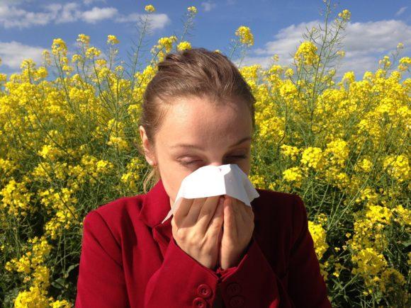 Allergie e raffreddore da fieno con l'arrivo delle graminacee