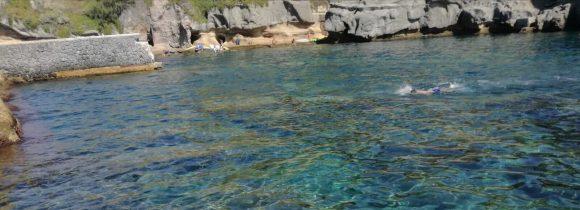 Vacanza al mare: vitto e alloggio, con piscina e giardino in cambio di compagnia
