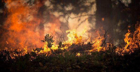 Incendio in Grecia: evacuati tre villaggi, ecco la situazione