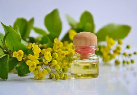 Tutti i benefici del Tea tree oil e perché averlo sempre in casa