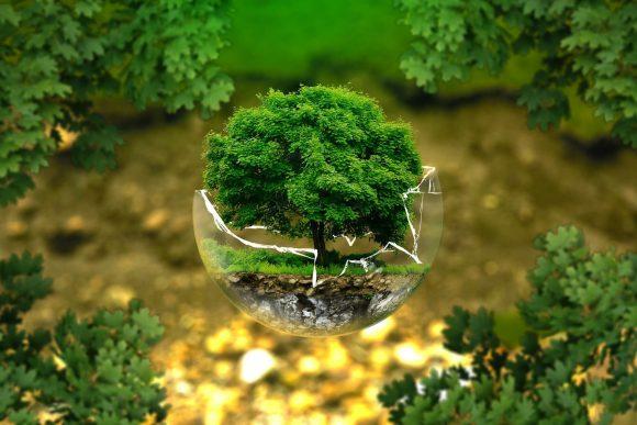 Bonus clima: il decreto legge che racchiude tutte le agevolazioni sull'ambiente