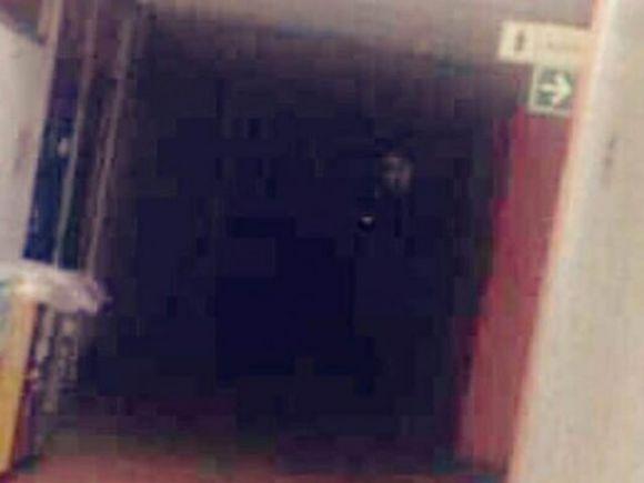 Fantasma presso la Facoltà di Psicologia dell'Università in Messico
