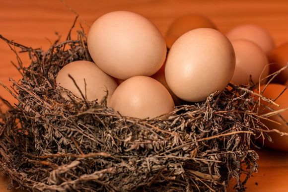 Le uova: ingredienti semplici, versatili e gustose