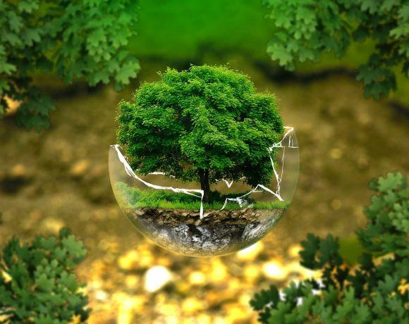 concorso ingegnare tutela ambiente