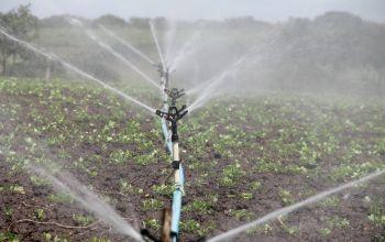 lavoro irrigazione